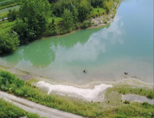Projekt Kiesabbau Bergheim – Information und Übersicht